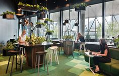 NAB Co-Working Village by Woods Bagot, using a mixture of various green Tretford carpet Tiles.   Photography by Shannon McGrath.
