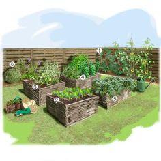 Projet aménagement jardin : Potager au carré Tomate grappe Radis 18 jours Mesclun Menthe marocaine Haricots nains Aromatiques