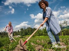 Ricola Herb Farmer #Herbs #Field #Weeding #Ricola