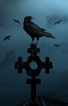 """Crows Ravens:  """"Crow,"""" by Kundendienst."""