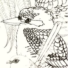 #Sneakypeek at my #Wildscapes #bookcover #sketch.... Yes it totally includes a #kookaburra!! #WIP #aussie #arttherapy #colouringbook #detail #illustration #drawing #art #design #naturalhistory