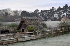 West Stow Anglo-Saxon Village, frosty morning, 2015.