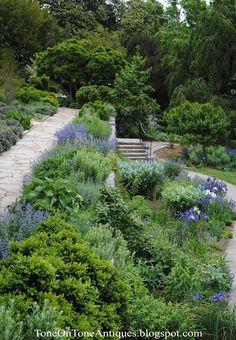 Slope Garden: Tone on Tone Garden Series: Visiting a Blue Garden Hillside Garden, Sloped Garden, Garden Paths, Landscaping A Slope, Farmhouse Landscaping, Landscaping Ideas, Blue Garden, Dream Garden, Outdoor Plants