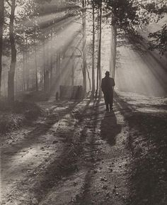 Autumn Morning, Photo by Ján Halaša, 1939 Fine Art Photo, Photo Art, Good Old Times, Autumn Morning, Feeling Special, Pathways, Cinematography, Sunny Days, Illusions