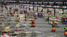 Aalsmeer Flower Auction Logistics in Action