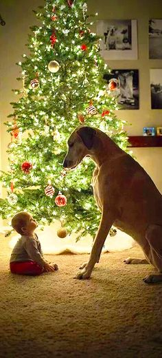 Merry Christmas *Little One* !!❤