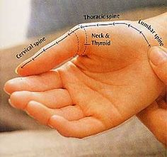 Want to know how to treat a headache and cold through your hands? Here's how!! Learn more at our hand reflexology course urlm.in/sevg