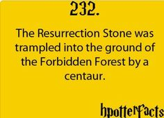harry potter facts - deathly hallows - I always wondered what happened or if someone found it?