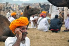 A man talks on the phone at a camel trading event