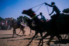 Camel Racing at the Pushkar Camel Fair, in Rajasthan, India.