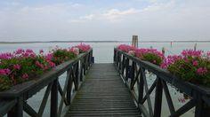 bibione's laguna