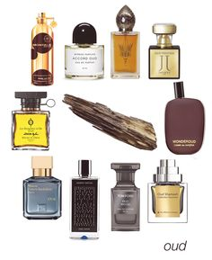 Oud, Agarwood, Aloeswood - whatever you call it, there's no denying it's one of the most popular notes.  Some of our favorite oud scents include Dark Aoud, Accord Oud, Oud 777, Oud Prestige, Wonderoud, Oud Shamash, Oud Wood, Dark Saphir, Oud from MFK, and Oud from Mona di Orio. #niche #perfume #luckyscent