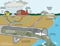 Superstorm Sandy's Sewage Legacy : Wildlife Promise http://blog.nwf.org/2013/10/superstorm-sandys-sewage-legacy/