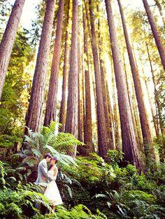 http://www.stylemepretty.com/2010/10/01/nestldown-wedding-by-danielle-gillett-photography/#