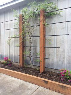 Garden Yard Ideas, Lawn And Garden, Garden Projects, Back Gardens, Small Gardens, Outdoor Gardens, Garden Trellis, Garden Structures, Front Yard Landscaping