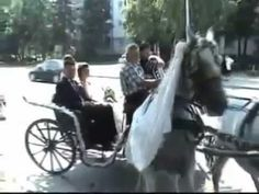 Best Wedding Fail Compilation 2012