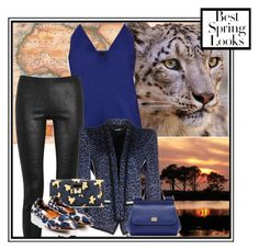 """Blue Leopard"" by elzykizer ❤ liked on Polyvore featuring Haider Ackermann, Rick Owens, Barbara Bui, Dolce&Gabbana, Lanvin, H&M, Blue and LeopardPrint"