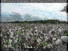 ▶ Eli Whitney and the Cotton Gin - YouTube CC Cycle 2 Week 1: History