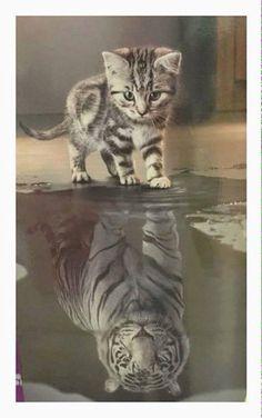 Der Unterschied zwischen Selbstbild und Fremdbild ;)