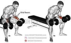 Seated dumbbell wrist curl. An isolation exercise. Target muscles: Wrist flexors. Synergists: None.