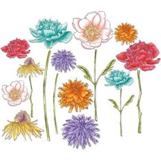 """Great coloring ideas for Tim Holtz """"Flower Garden"""""""