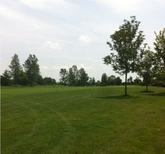 Rolling Meadows Hole 1 from the halfway point. For Procella: http://www.procellaumbrella.com/