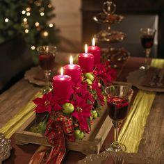 Poinsettias, una tradicional decoración Navideña Poinsettias, a long lasting Christmas decoration