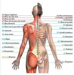 decodage dos le mal a dit decodage des emotions Décodage Biologique, Le Mal A Dit, Pilates, Massage Techniques, Sport Fitness, Qigong, Massage Therapy, Natural Medicine, Yoga Meditation