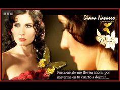 Diana Navarro Una Paloma Blanca Con Letra