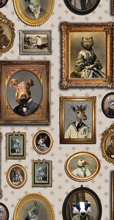 Portrait Gallery by Graduate Collection - Mauve - Wallpaper : Wallpaper Direct Graduate Collection Portrait Gallery Mauve Wallpaper main image Wallpaper Toilet, Funky Wallpaper, Hallway Wallpaper, Tier Wallpaper, Bathroom Wallpaper, Animal Wallpaper, Wallpaper Wallpapers, Mustard Wallpaper, Fornasetti Wallpaper