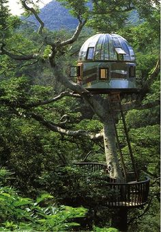 Tree House Getaways That Will Absolutely Blow Your Mind - DesignerzCentral