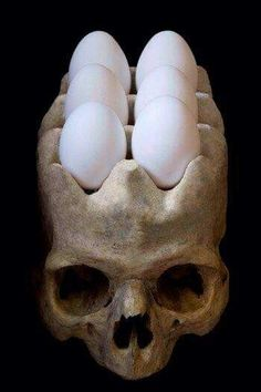 A skull egg holder for your fridge! Those are the most badass eggs we've ever seen. Home inspiration for the skull lover!