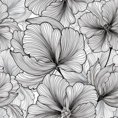 Black & White Tropical Flowers - Peel and stick wallpaper is easy to use and won't harm your walls. This application eliminates th - Temporary Wallpaper, Vinyl Wallpaper, Peel And Stick Wallpaper, Painting & Drawing, Plant Drawing, Drawing Flowers, Water Drawing, Flower Drawings, Tattoo Flowers