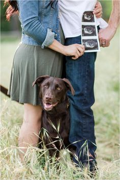 Pregnancy Announcement with Ultrasound and Dog - Baby announcement pictures - Pregnancy Pregnancy Announcement Photography, Pregnancy Announcement Pictures, Cute Baby Announcements, Maternity Photography Poses, Maternity Pictures, Baby Announcement With Dogs, Cute Pregnancy Pictures, Pregnancy Reveal Photos, Birth Photography