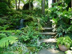 Jay's garden in North Carolina. Click through for more photos of this garden.