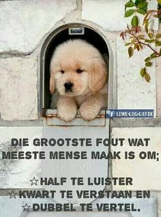 ja..dit is Qoutes, Life Quotes, Afrikaanse Quotes, Marriage Relationship, Christianity, Poems, Africa, Humor, Sayings