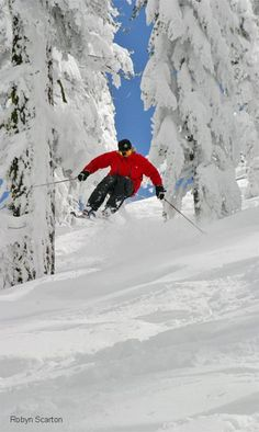 Ski Vacation   UFOREA.org   The trip you want. The help they need.