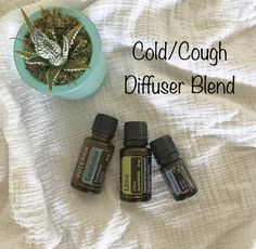 Use this diffuser blend to help open airways, ease congestion, and soothe a cough! 3 drops of each in the diffuser!   https://instagram.com/p/BYGbtpkg6dR/