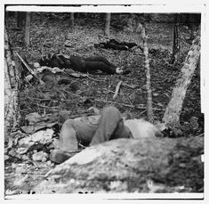 Civil War Photos - 544. Four Dead Soldiers in the Woods Near Little Round Top - Gettysburg, PA, July 1863