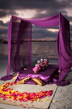 Asian Fusion St Petersburg Wedding with Purple and Yellow Ceremony Flower Rose Petals and Purple Canopy Tent | St. Petersburg Wedding Florist Iza
