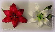 Всем,добрый день! Хочу рассказать,как я делаю тычинки и пестик для лилий. фото 25 Plants, Flowers, Plant, Planets