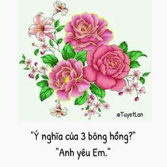 Colorful Flowers, Beautiful Flowers, Flower Meanings, Bloom, Rose, Anime, Buddha Teaching, Caption, Deep