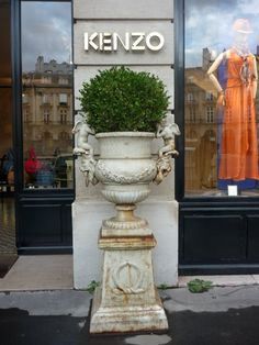 A rustic urn at the entrance of a Paris shop. It would look amazing as a focal point in any garden... large or small...
