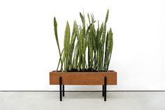 Vintage teakhouten plantenbak www.vanOnS.eu
