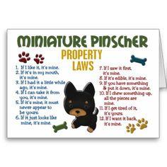 miniature_pinscher_property_laws_4_card-p137665896886948848envwi_400.jpg (400×400)