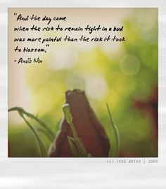 And the day came when the risk to remain tight in a bud was more painful than the risk it took to blosom.