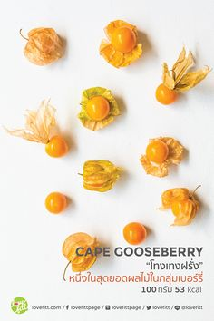"Cape Gooseberry ""โทงเทงฝรั่ง""หนึ่งในสุดยอดผลไม้กลุ่มเบอร์รี่ Healthy Menu, Healthy Eating, Diet Menu, Clean Recipes, Plating, Lose Weight, Knowledge, Yoga, Workout"