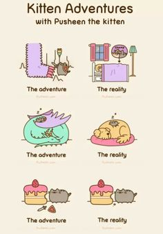 Pusheen is great look at pusheen pusheen is adorable!!!!!!!!!!!!!!!!!!!!!!