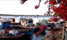 - Barcos ancorados no Canto do Mangue - Rio Potengi - Natal- RN - Brasil