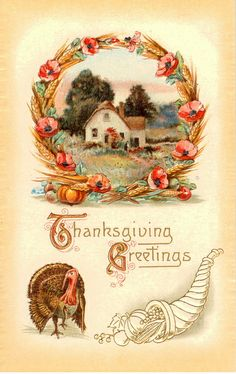 Divided Back Postcard Thanksgiving Greetings Turkeys Thanksgiving Greeting Cards, Thanksgiving Pictures, Thanksgiving Blessings, Vintage Thanksgiving, Thanksgiving Crafts, Vintage Holiday, Happy Thanksgiving, Vintage Fall, Vintage Greeting Cards